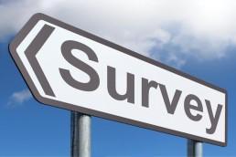 damp survey